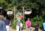 It's tough to be a Bug in Discovery Island at Disney Animal Kingdom