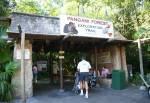 Pangani Forest Exploration Trail in Africa at Disney Animal Kingdom