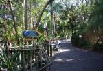 Kids Discovery Club on Discovery Island at Disney Animal Kingdom