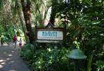 Wildlife at Rafiki's Planet Watch in Disney Animal Kingdom