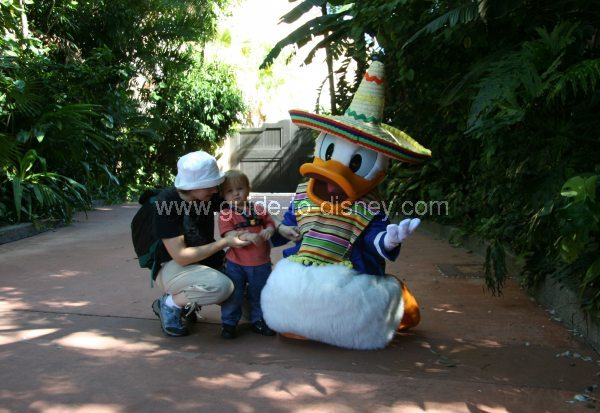 Guide To Disney World Donald Duck Character Greet At